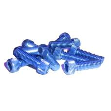 Болт алюминиевый под шестигранник M6 x 25 синий  TW