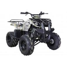 Квадроцикл Motoland 125 Fox
