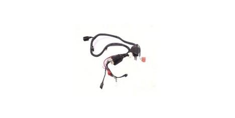 Жгут проводов TTR250a
