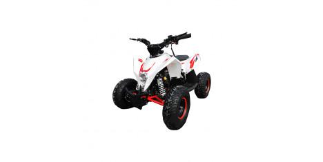 Квадроцикл Motax Gekkon 70cc